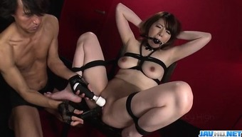 Reika Ichinose enjoys having sex in hard thrall exhibit
