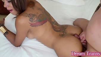 Busty Shemale Veronica Havenna Wraps Her Legs Around Her Horny Lover