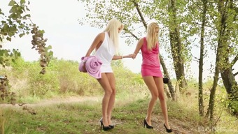 A pair of heated youthful blonde little girls open air discover and aqcuire into softcore lesbian act