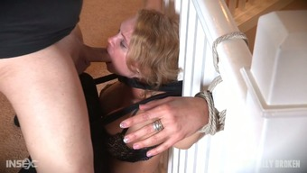 Charming brown beautiful white colored lady certain to the paling and facefucked