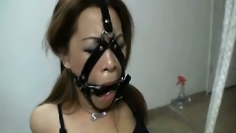 Femdom Date In Attractive Mania Manage