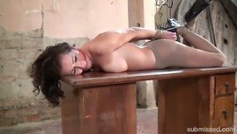 Just buxom nympho with the use of sexy booty Adel Sun light who might treasures thralldom